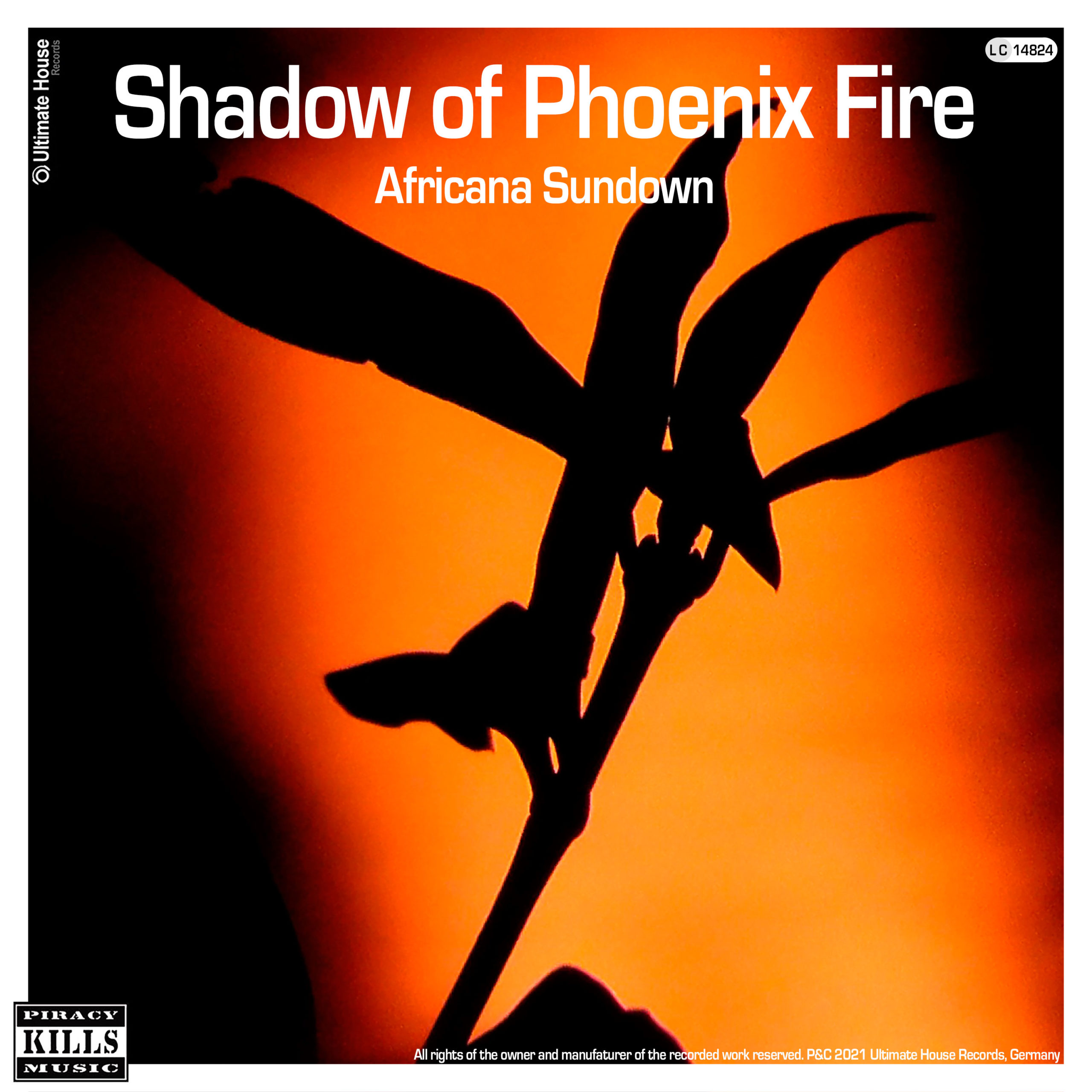 https://www.ultimate-house-records.com/wp-content/uploads/2021/05/147-Shadow_of_Phoenix_Fire-Cover_3000px_web-scaled.jpg